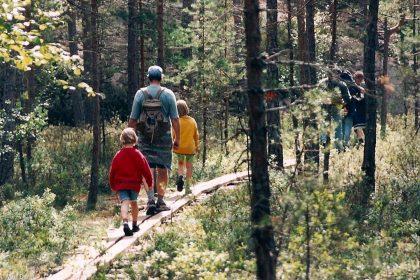 Wandern in Schweden (Tiveden bei Karlsborg)