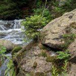Das Okertal im Harz, ein Reisetipp mit Wildwasser