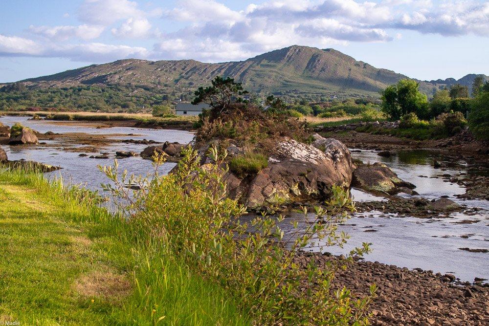 Seen Irland Flussmündung bei Ebbe