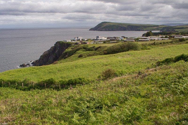 Fishguard Küste und Campingplatz