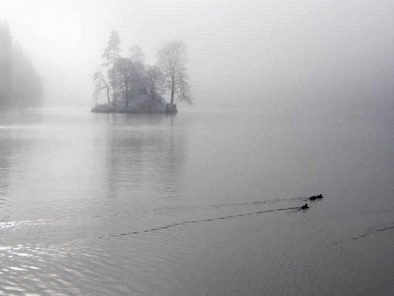 Morgennebel am Königssee