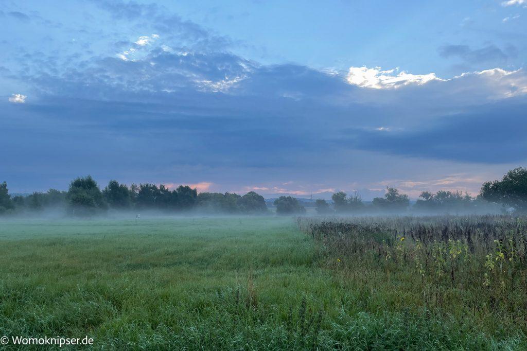 Morgenstimmung in Grifte (Edermünde)