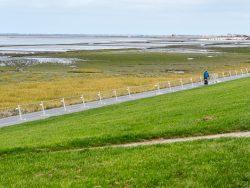 Spätsommer an der Nordseeküste (1) - Ostfriesland