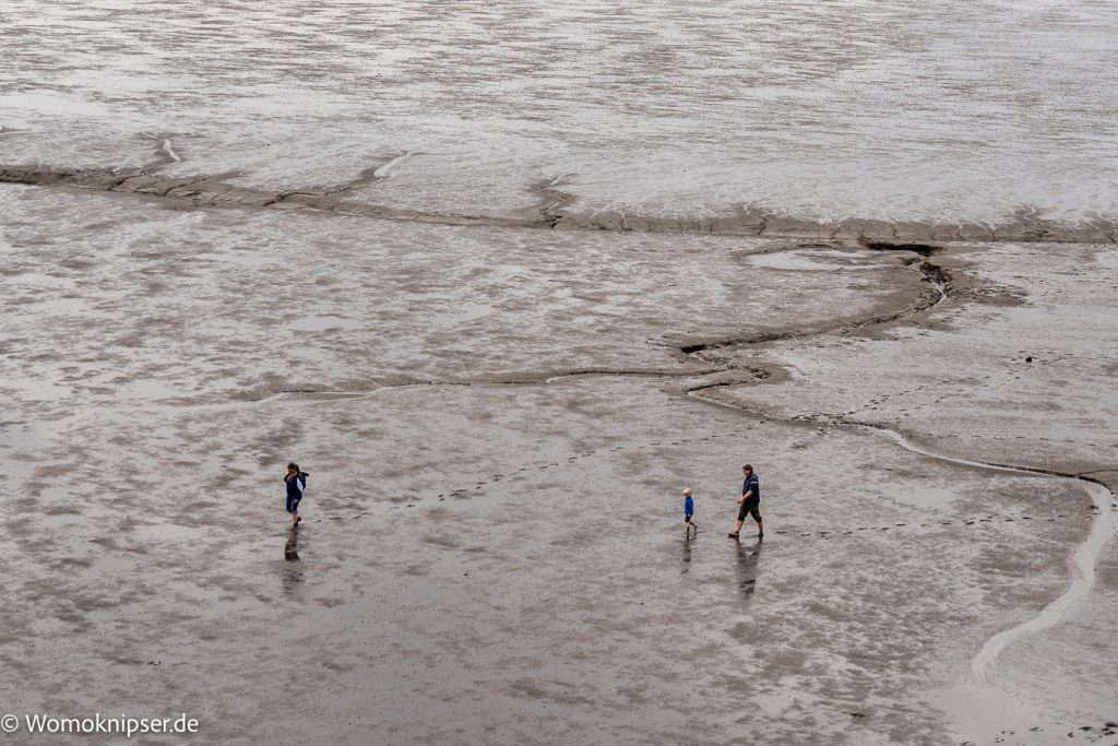 Erlebnisse im Wattenmeer Dorum