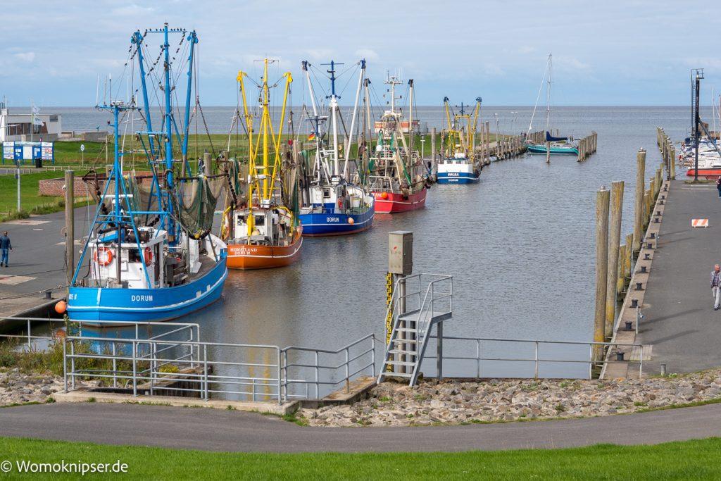 Kutterhafen von Dorum mit Krabbenkuttern