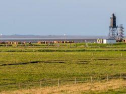 Spätsommer an der Nordsee (2) - Dorum an der Wesermündung