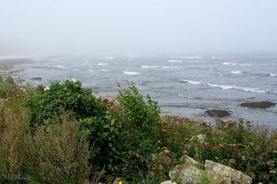 Nebel über der See