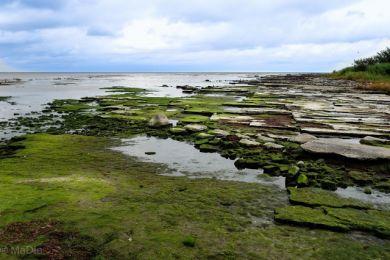 Küste von Bornholm