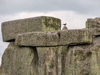 Stonehenge, die Steinsetzung
