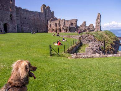 Tantallon Castle Schottland