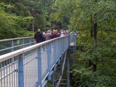 Bad Harzburg Baumwipfelpfad