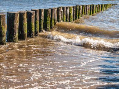 Oosterschelde am Strand