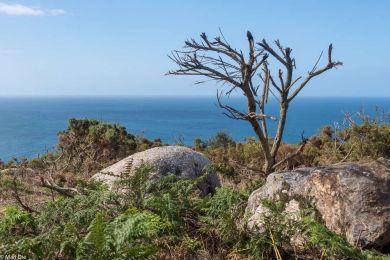 Landschaft am Cap Fisterra